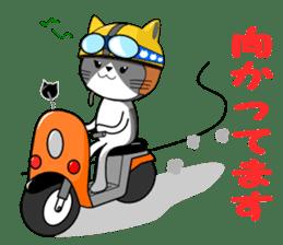 Cat sticker sticker #552336