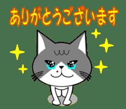 Cat sticker sticker #552353