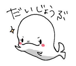 Of beluga, Iruko. sticker #555270