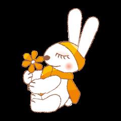funny bunny (English version)