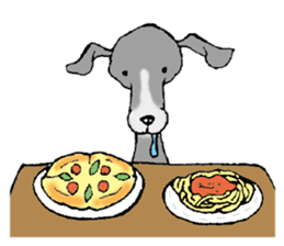 The Italian Greyhound festival! sticker #557562