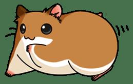 Hamster's assortment sticker #582223