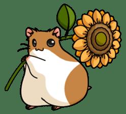 Hamster's assortment sticker #582231