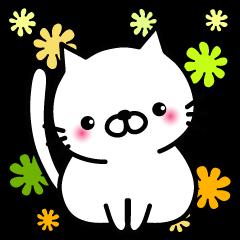 Striped cat & white cat