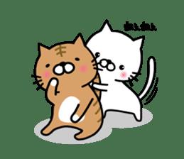 Striped cat & white cat sticker #590556