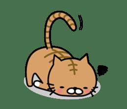 Striped cat & white cat sticker #590570
