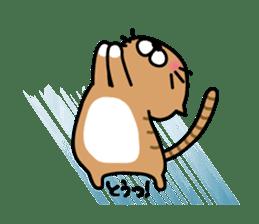 Striped cat & white cat sticker #590572