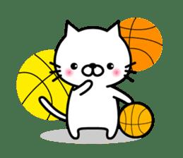 Striped cat & white cat sticker #590589
