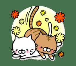 Striped cat & white cat sticker #590590