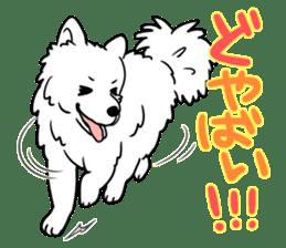 Mikawa dialect sticker #592854