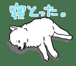 Mikawa dialect sticker #592872