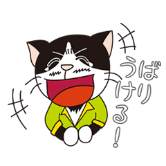 President of cat contractor from Kyushu.