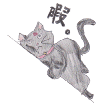 Pencil handwriting cat sticker #599017