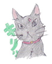 Pencil handwriting cat sticker #599021