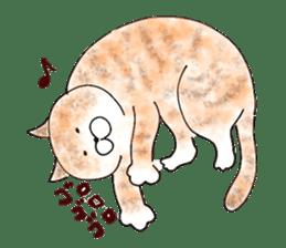 I'm sorry in the cat sticker #601072