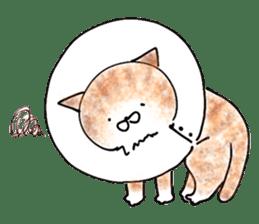 I'm sorry in the cat sticker #601075