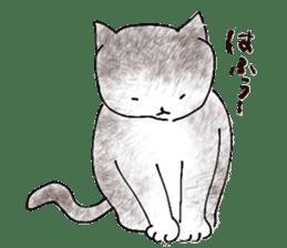 I'm sorry in the cat sticker #601085