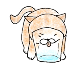 I'm sorry in the cat sticker #601088