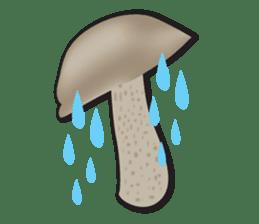 Mushroom sticker #603584