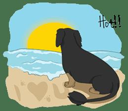 Cute Dachshund Ryu!! sticker #606338