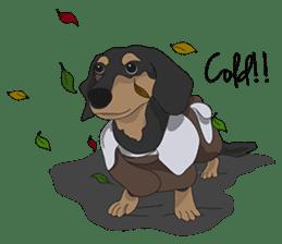 Cute Dachshund Ryu!! sticker #606339