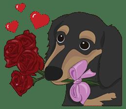Cute Dachshund Ryu!! sticker #606353