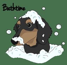Cute Dachshund Ryu!! sticker #606360