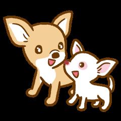 Lulu & Kiki