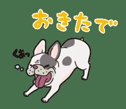 The French bulldog of Naniwa sticker #615363