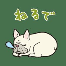 The French bulldog of Naniwa sticker #615364