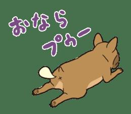 The French bulldog of Naniwa sticker #615368