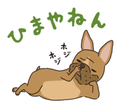 The French bulldog of Naniwa sticker #615397