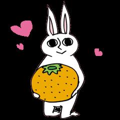 Crankybox rabbit