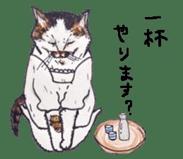 Strange world of cats sticker #620813