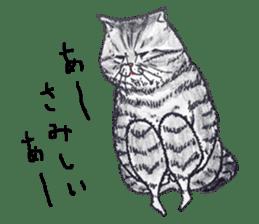 Strange world of cats sticker #620821
