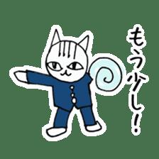 Cheerleaders cat sticker #621771