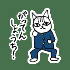 Cheerleaders cat sticker #621790