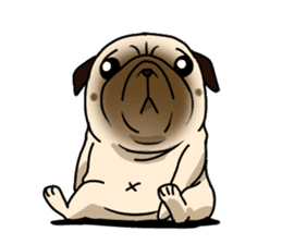 PUGchan sticker #622722