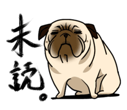 PUGchan sticker #622737