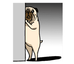 PUGchan sticker #622744