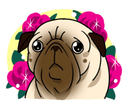 PUGchan sticker #622749