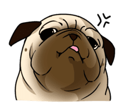 PUGchan sticker #622756