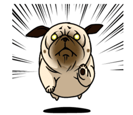 PUGchan sticker #622757
