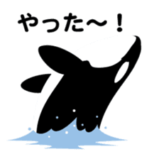 ORCAS ALL OVER!! sticker #622966