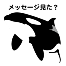 ORCAS ALL OVER!! sticker #622981