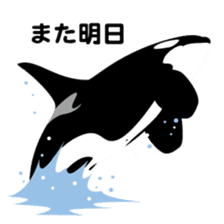 ORCAS ALL OVER!! sticker #622990