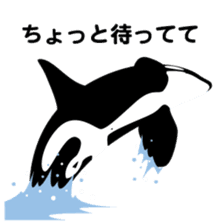 ORCAS ALL OVER!! sticker #622991