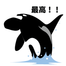 ORCAS ALL OVER!! sticker #622995