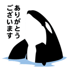 ORCAS ALL OVER!! sticker #622998