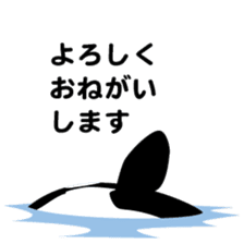 ORCAS ALL OVER!! sticker #623000